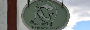 Pico Wale